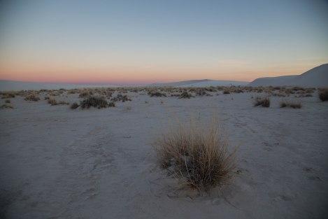 Sunset13-IMG_7339.jpg